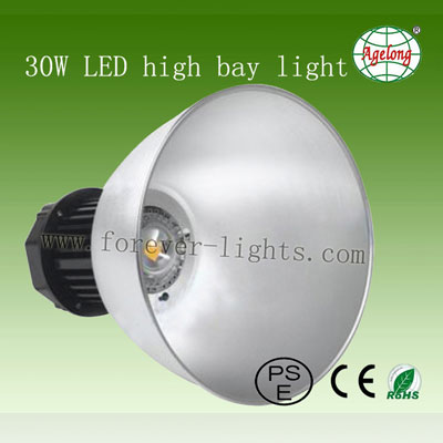 30W LED High Bay Light 40°