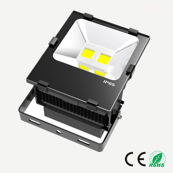 100W Fin LED Flood light