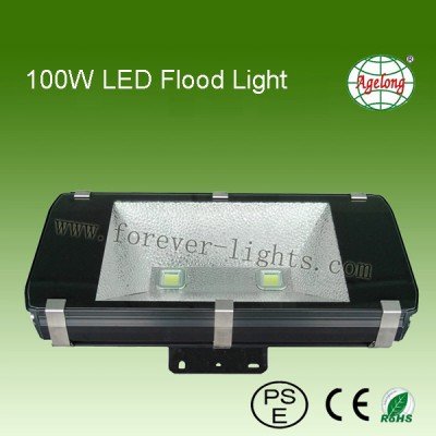 100W LED Flood Light 600Series